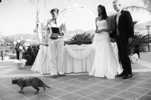 humanist non religious wedding ceremonies in spain